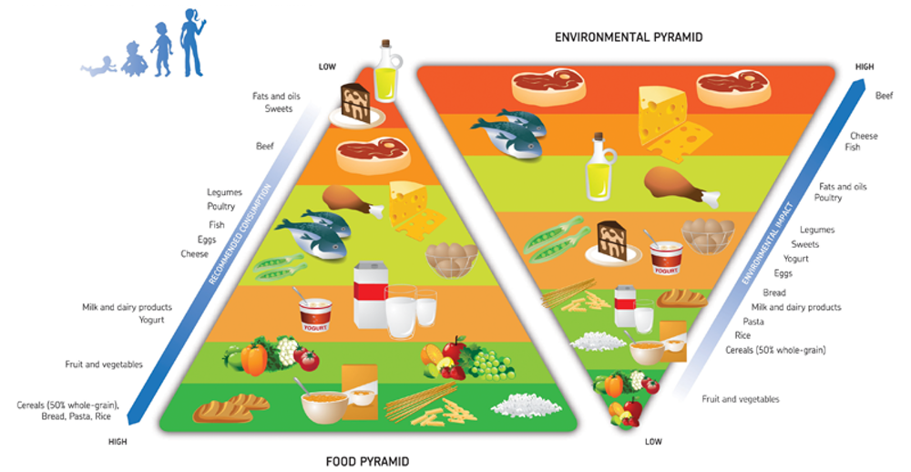 The Double Pyramid Showing Which Foods Are Best For Us As Individuals And Environment Barilla Center Food Nutrition CC BY SA