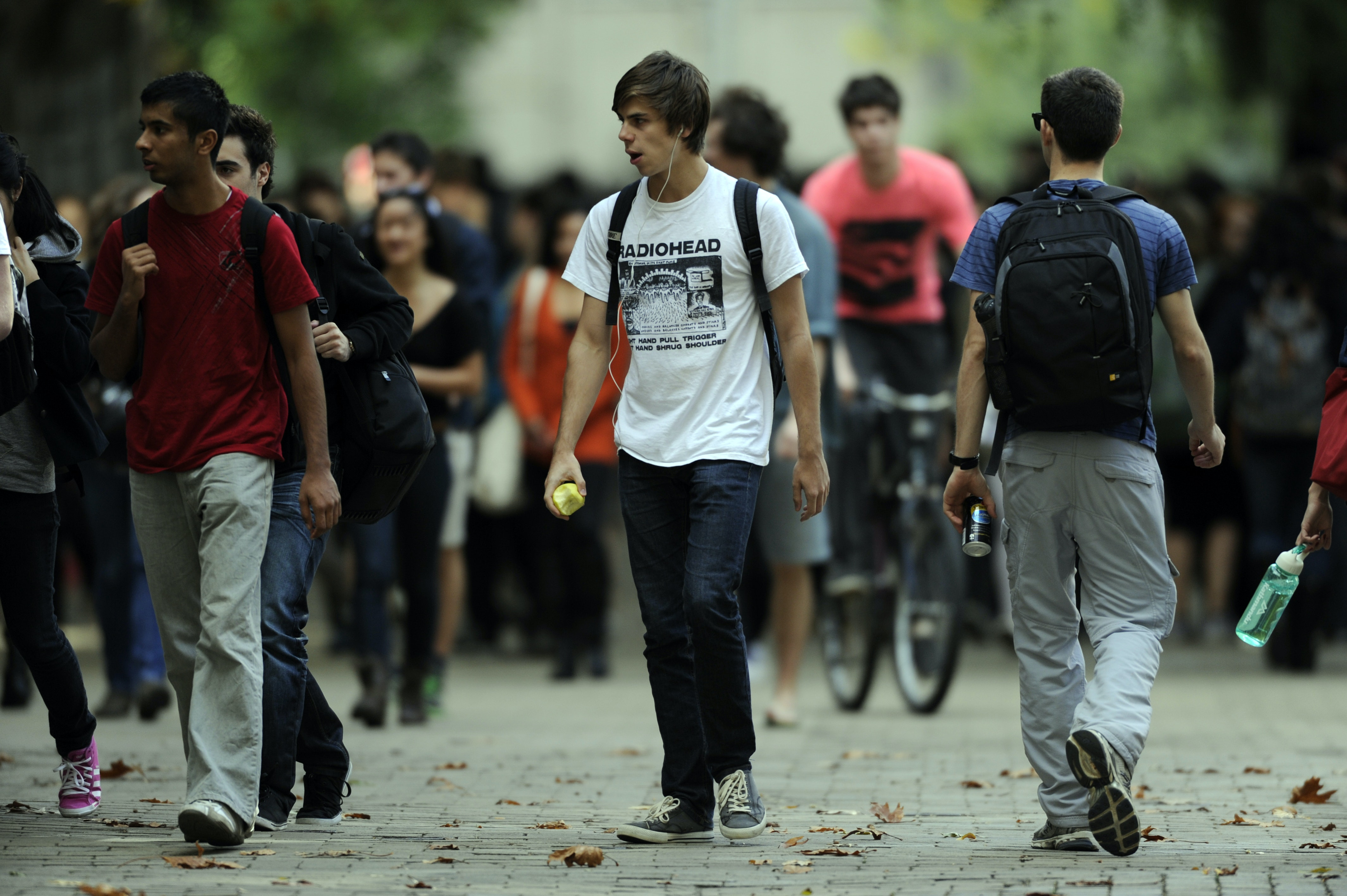 Fees and higher education: does social class make a difference?