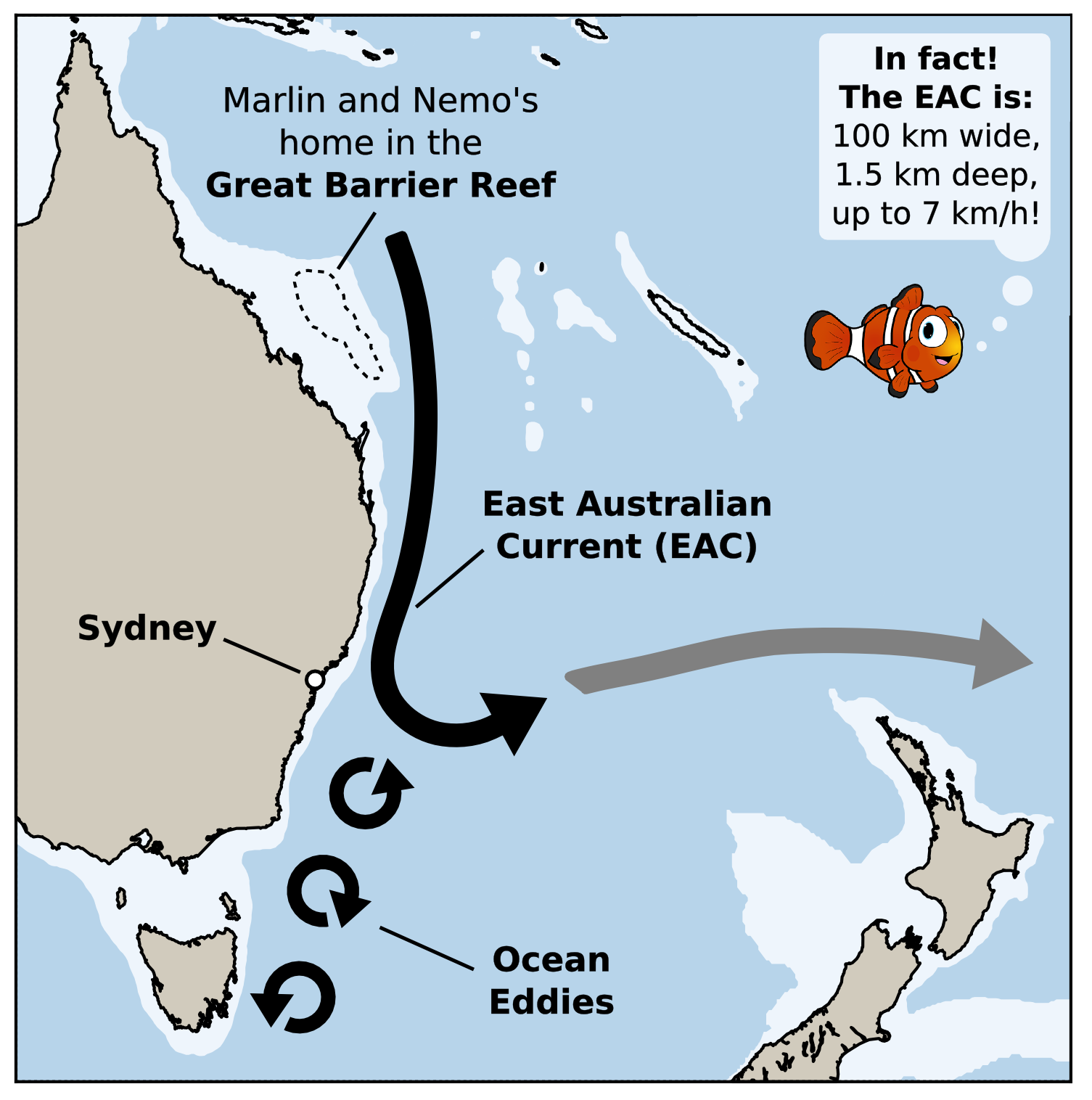 Can you surf the East Australian Current, Finding Nemo-style?