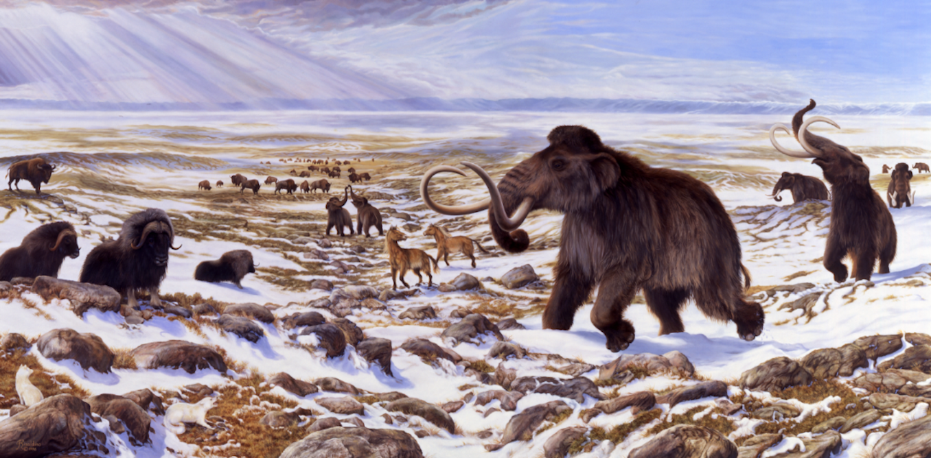 the ice age extinction of the megafauna Significant climate and habitat changes across europe, eurasia and the  americas appear to have preceded the large-scale extinction of.