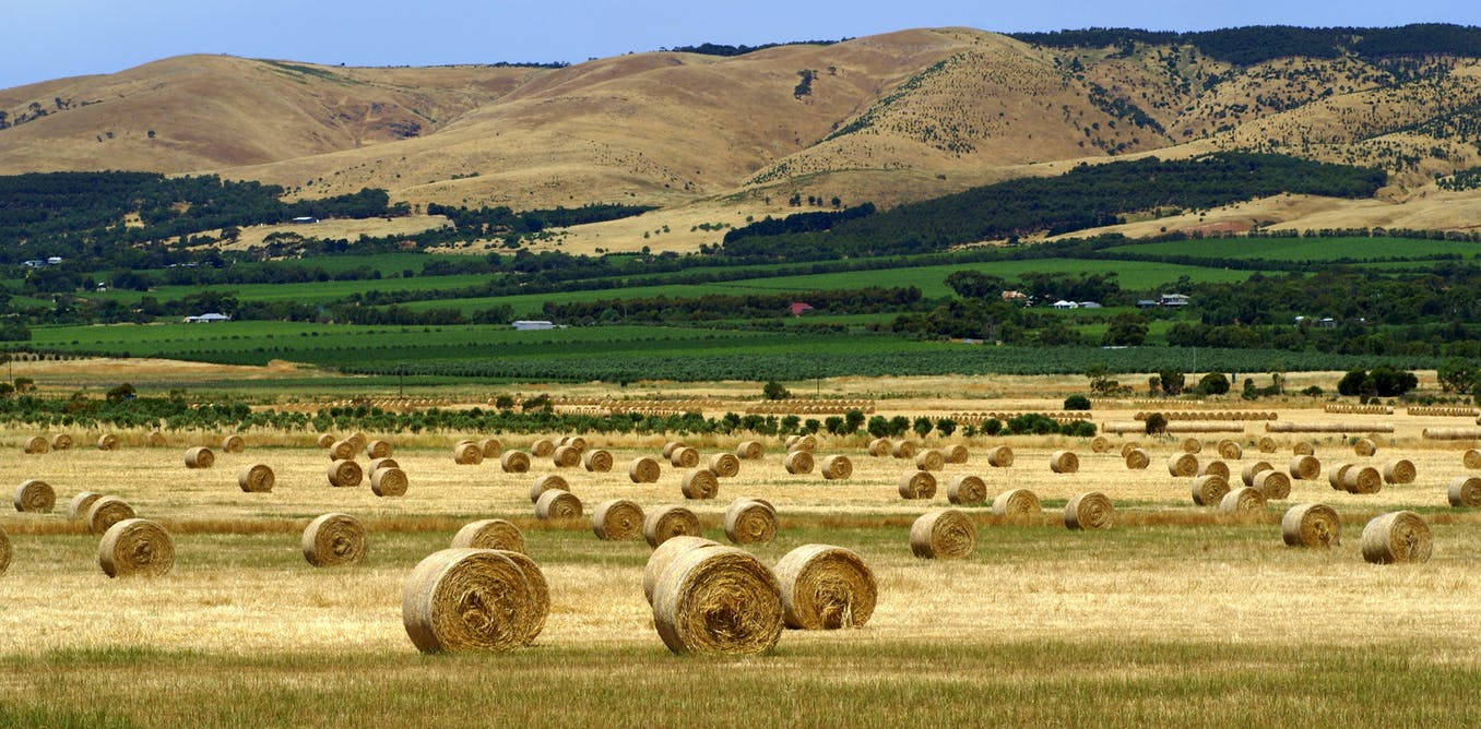 Agriculture In Australia Growing More Than Our Farming Future