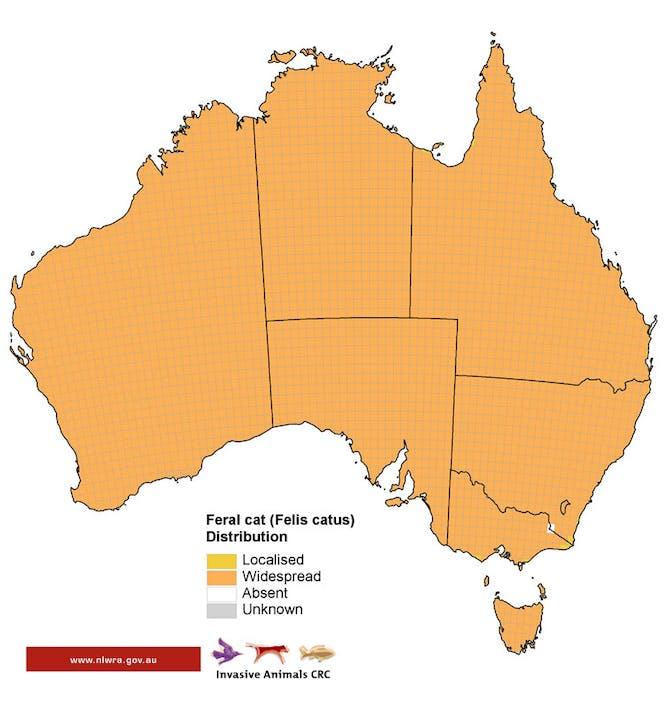 Feral Cat Distribution Around Australia