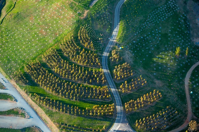 Future forecasting landscape architects might save the world for What do landscape architects do