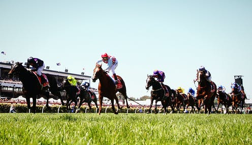 Do historical trends in Melbourne Cup champions point to a