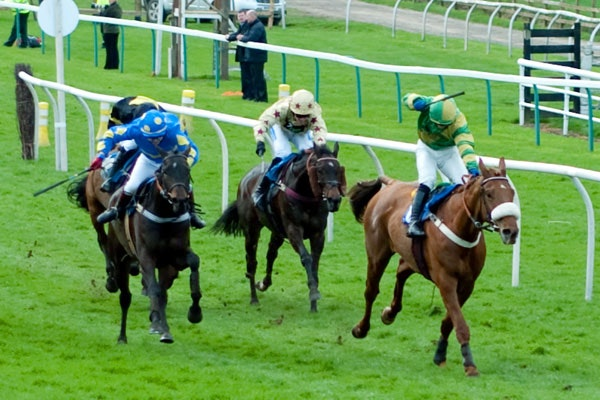 Better Yet Why Not Leave Horsies At >> Cup Week Leaves Racing Law Looking Like A Prize Winning Ass