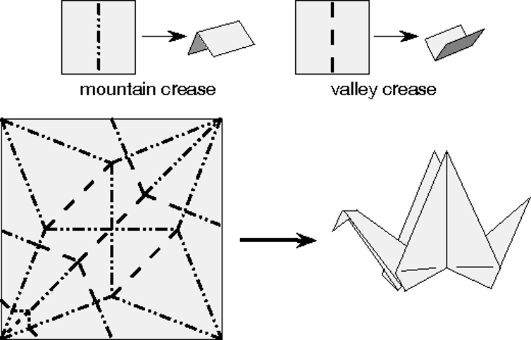 The Crease Pattern For Classic Flapping Bird Model With Mountain And Valley Creases Indicated Tom Hull