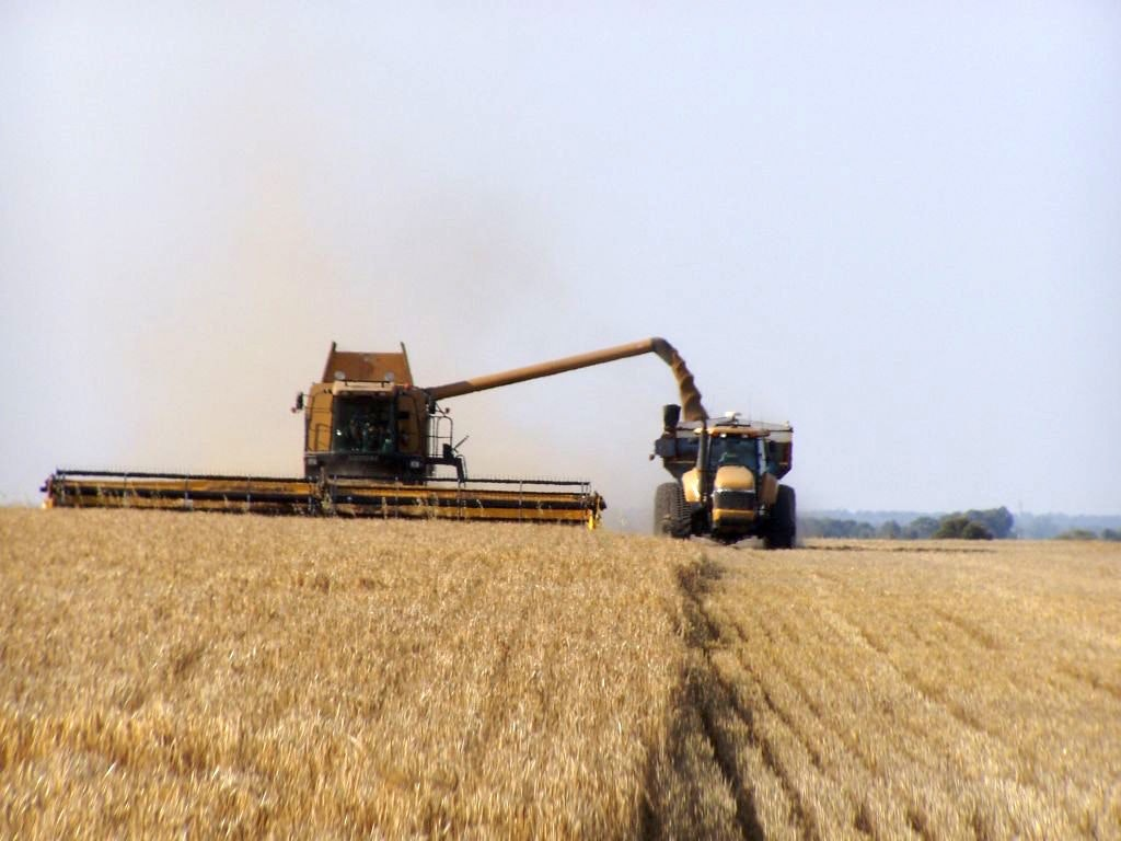 The supply chain in farming – do we count all the assets?