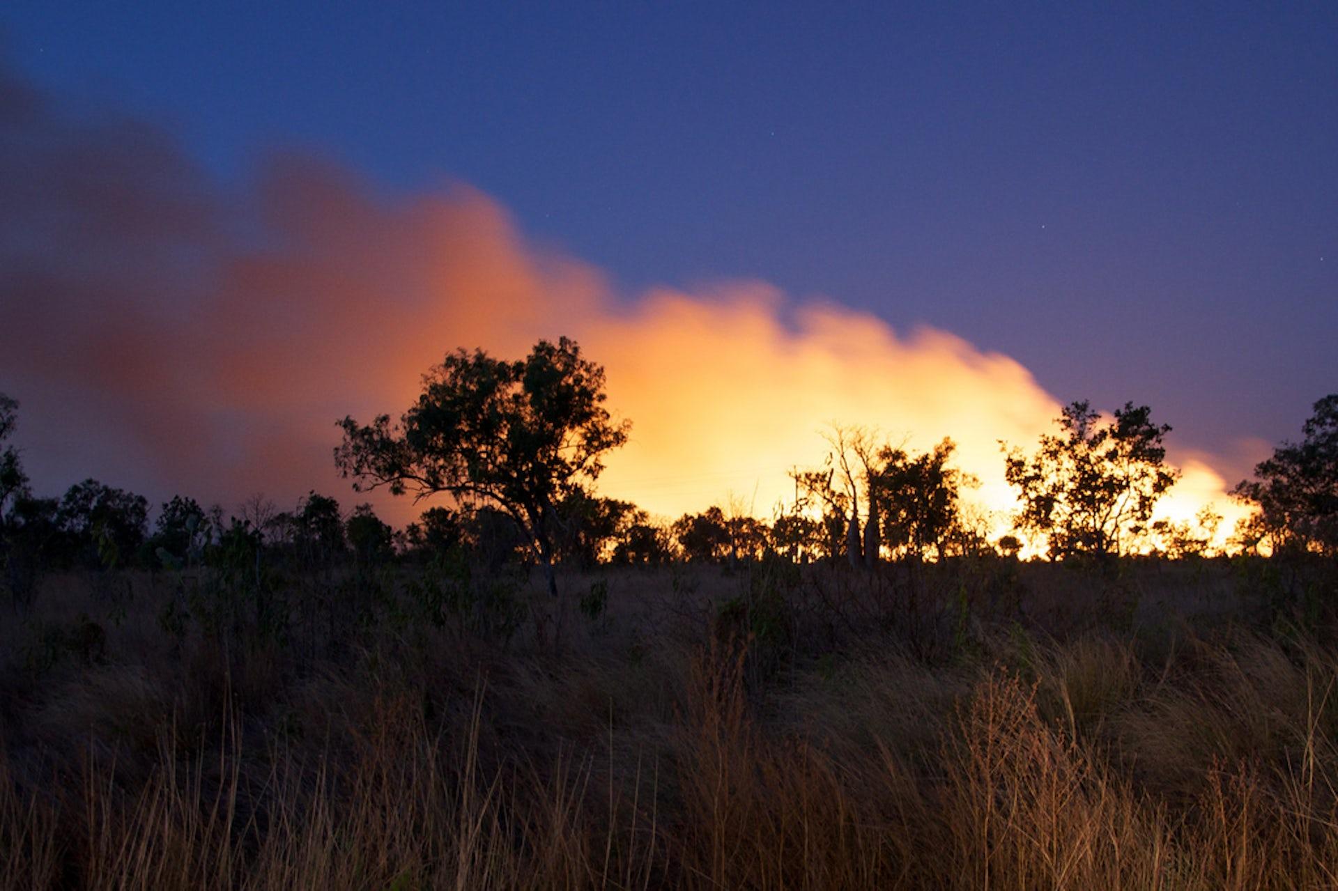 aboriginal health impact statement and guidelines western australia