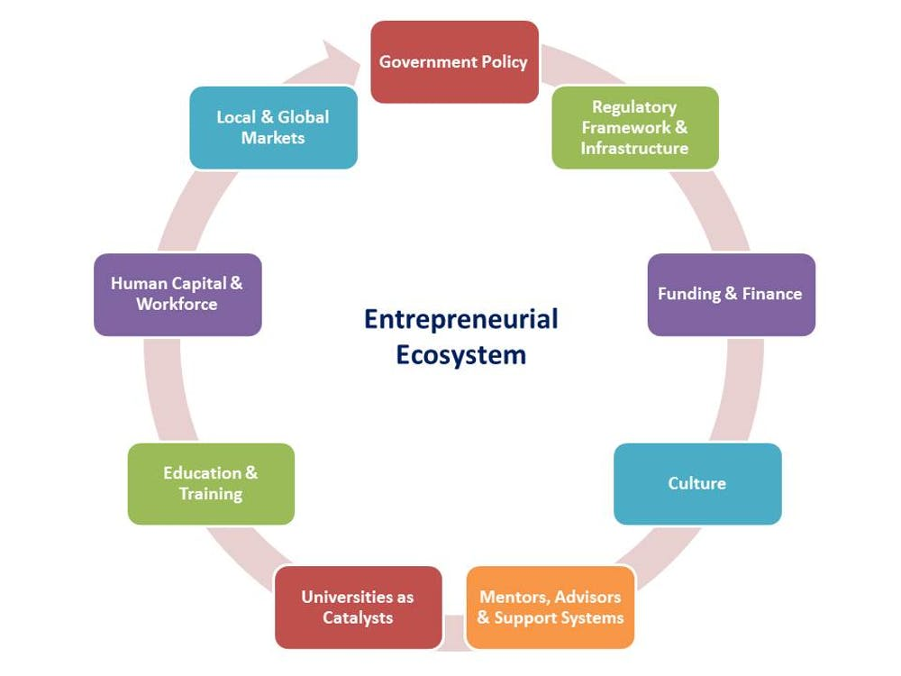 Entrepreneurial Ecosystems And The Role Of Government Policy