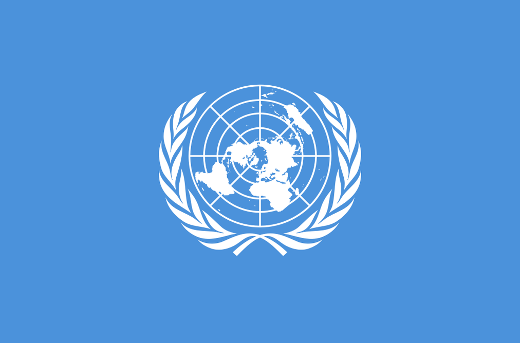 The risk of UN's Sustainable Development Goals: too many goals, too
