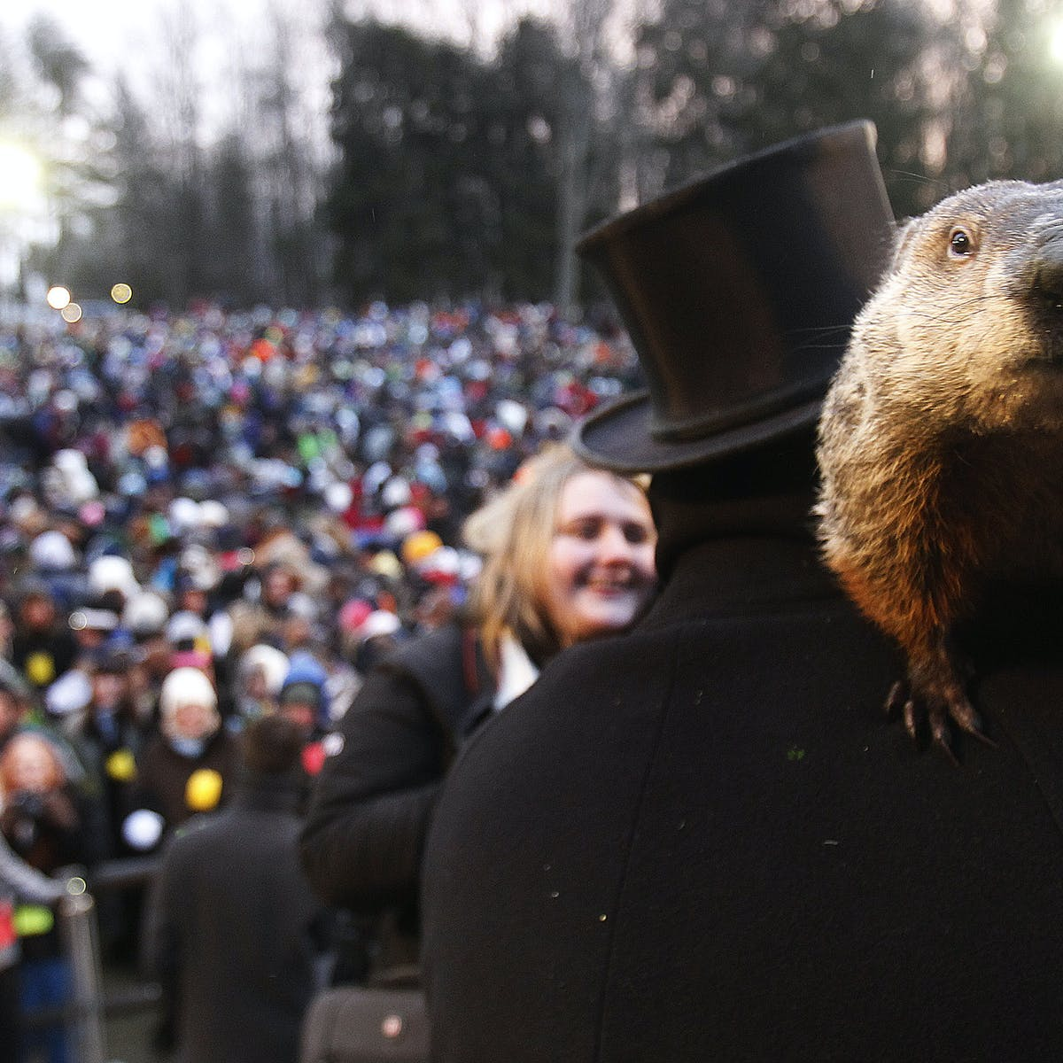 Why do groundhogs emerge on February 2 if it's not to