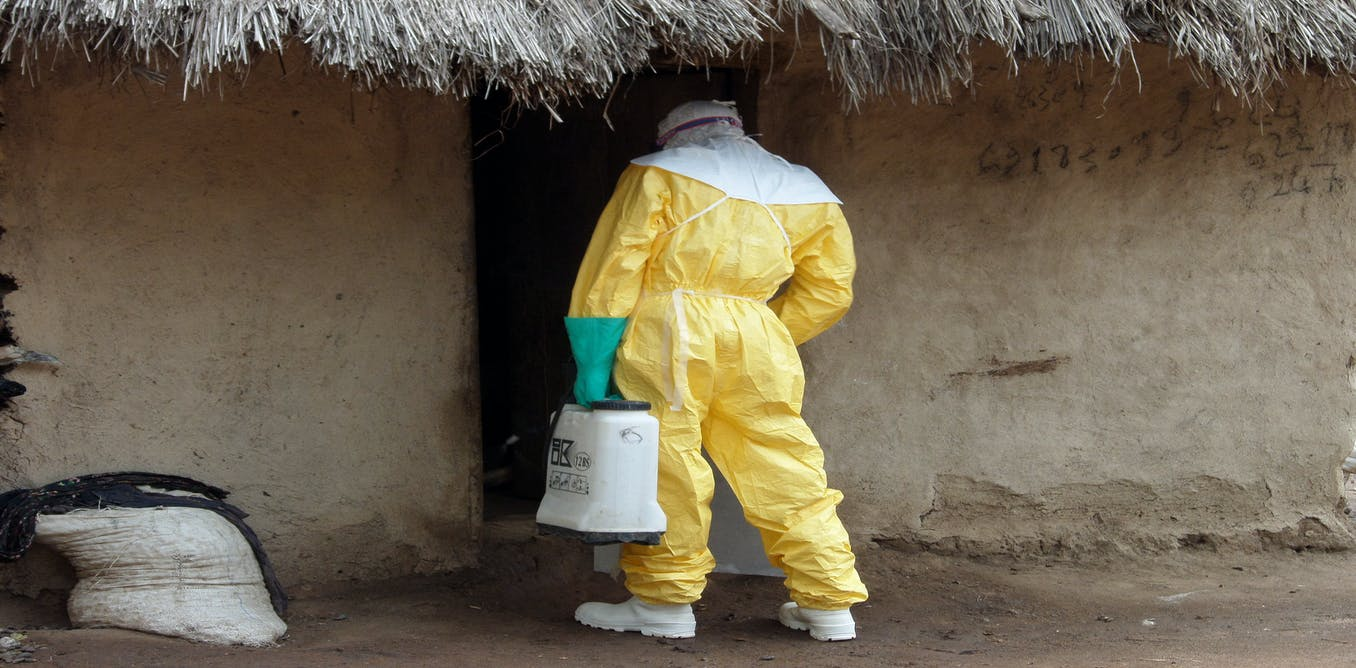 Beyond GDP: the Ebola shock should push us to pursue ...