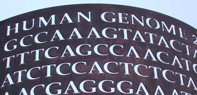 Dna berita riset dan analisis the conversation laman 9 the epigenome roadmap is now telling us how all these genes switch on and off in different parts of the body malvernweather Image collections