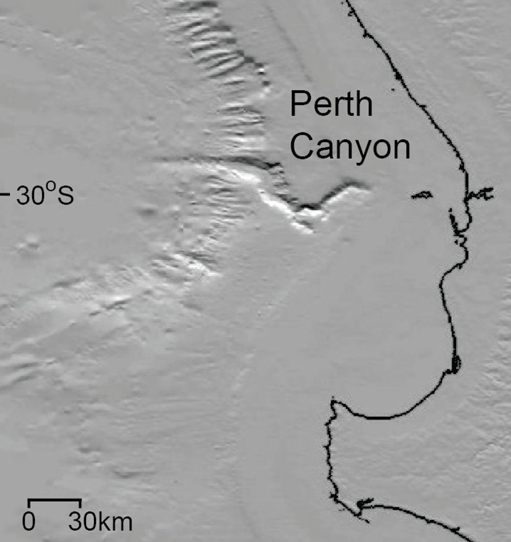 We are finally learning the perth canyons deep sea secrets location of the perth canyon off australias southwest coast c pattiaratchi uwa nvjuhfo Images