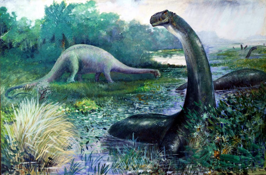 50fd2ee6a37 Why Brontosaurus is no longer a dirty word for dinosaur hunters