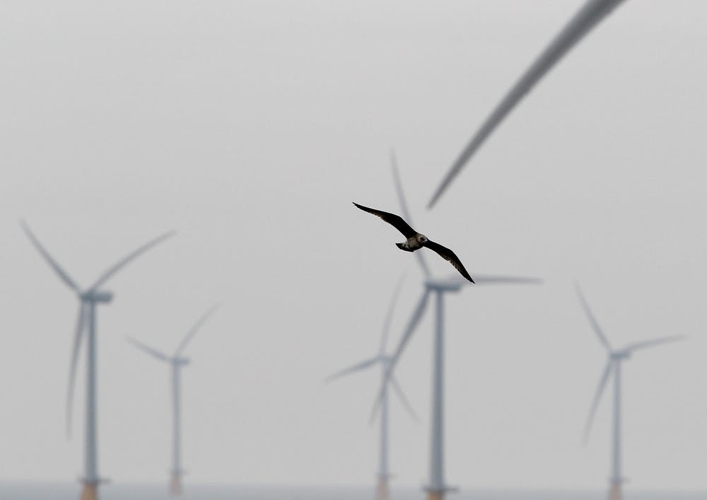 What can be done to make sure that wind energy and Africa's