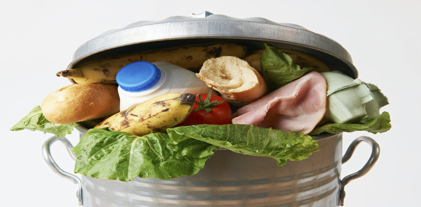 thesis on food waste Food waste food waste is in many instances avoidable in the uk, the government has put in place specific regulation, which has led to several businesses eg.