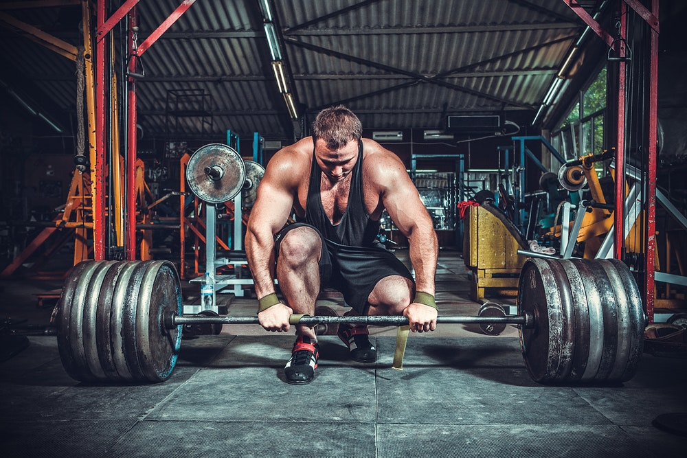 Image result for Steroids Improve Your Training