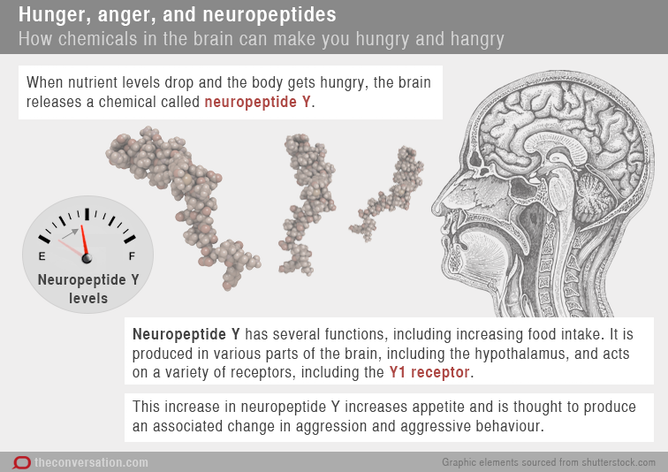 health check the science of hangry or why some people get dealing hanger