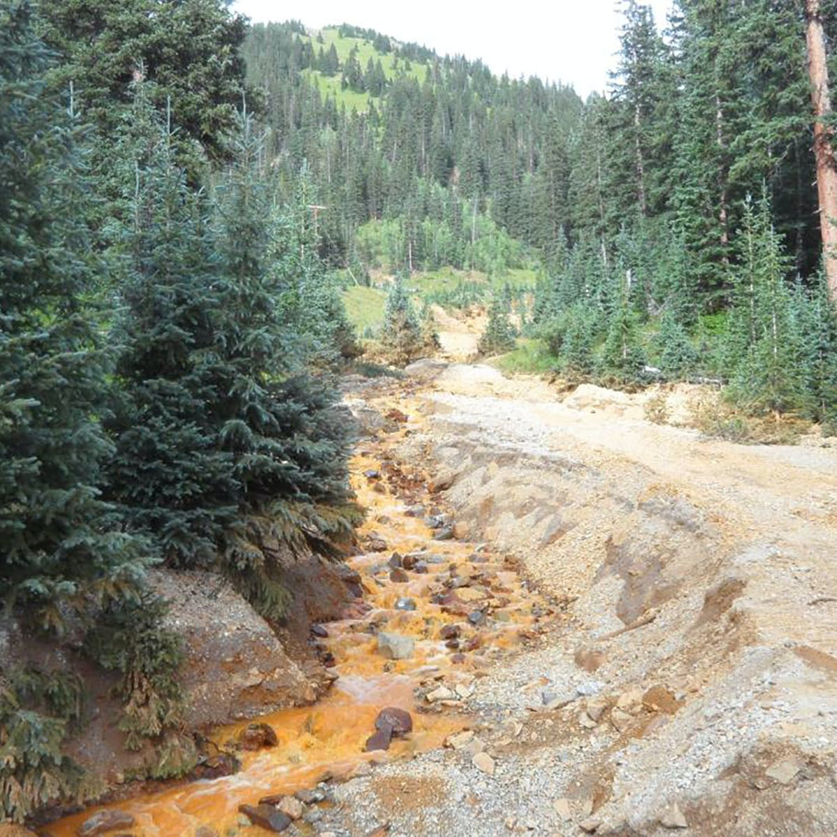 Canary in the Gold King Mine: legacy of abandoned mines means more