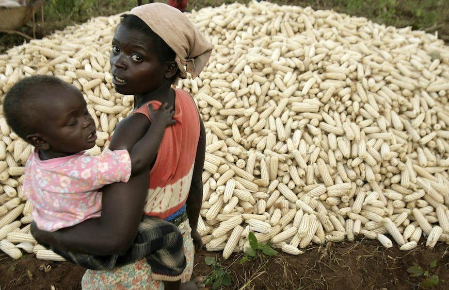 Malawi's farm subsidy benefits the poor but doesn't come cheap