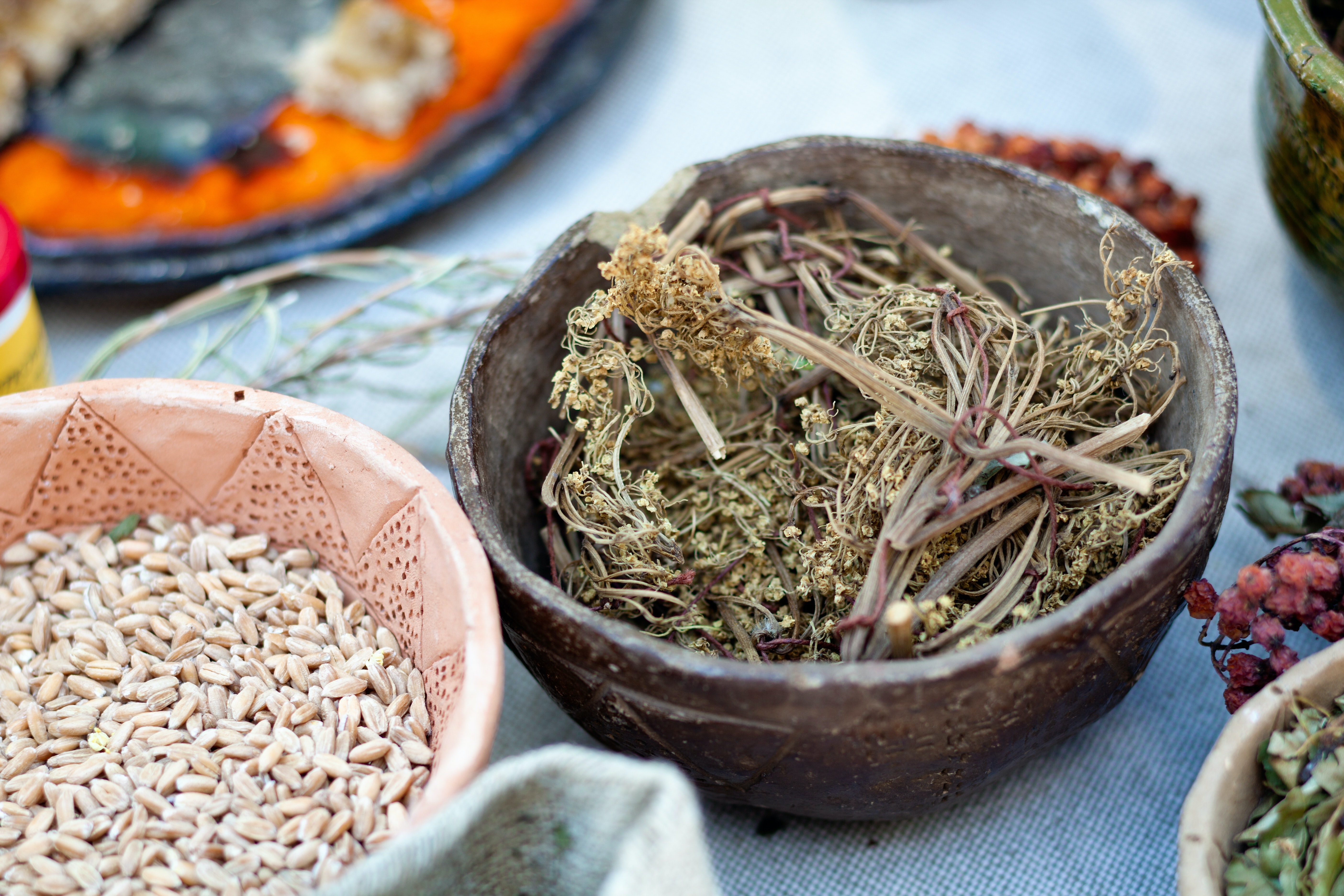 Why alternative medicine should be integrated into conventional health care