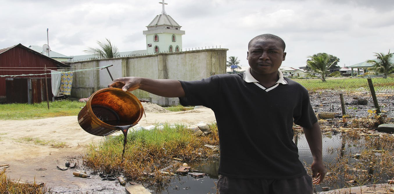niger delta conflict on the nigerian economy politics essay Niger delta conflict on the nigerian economy politics essay the objective of this chapter is to provide a background to the study this includes the implication of the niger-delta (nd) conflict.