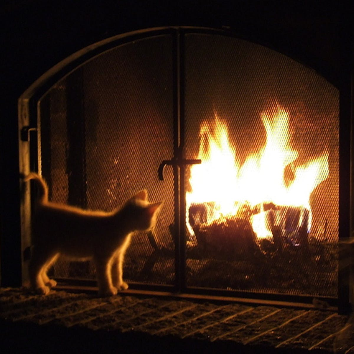 Comment Gagner De La Chaleur Dans Une Maison cinq astuces pour garder votre maison au chaud cet hiver