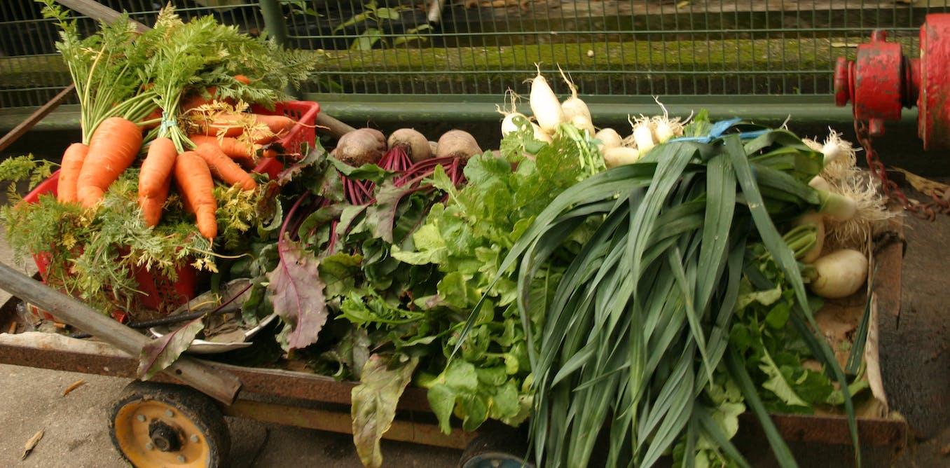 Fresh Food Ideas Woolworths
