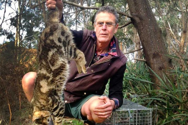 Australia war on feral cats