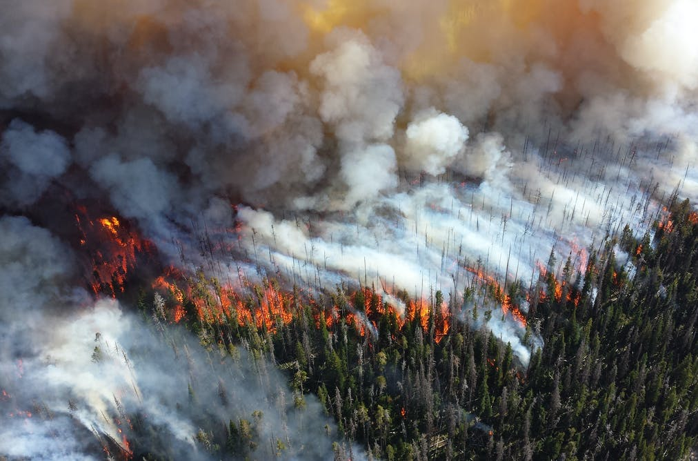Wildfires in West have gotten bigger more frequent and longer