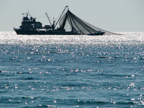 The race to fish: how fishing subsidies are emptying our oceans