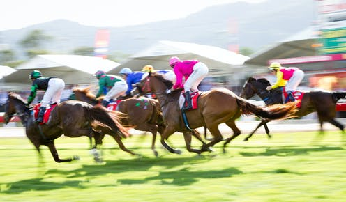 Improving safety in horse racing: it's all in the data