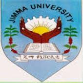 Jimma University on The Conversation