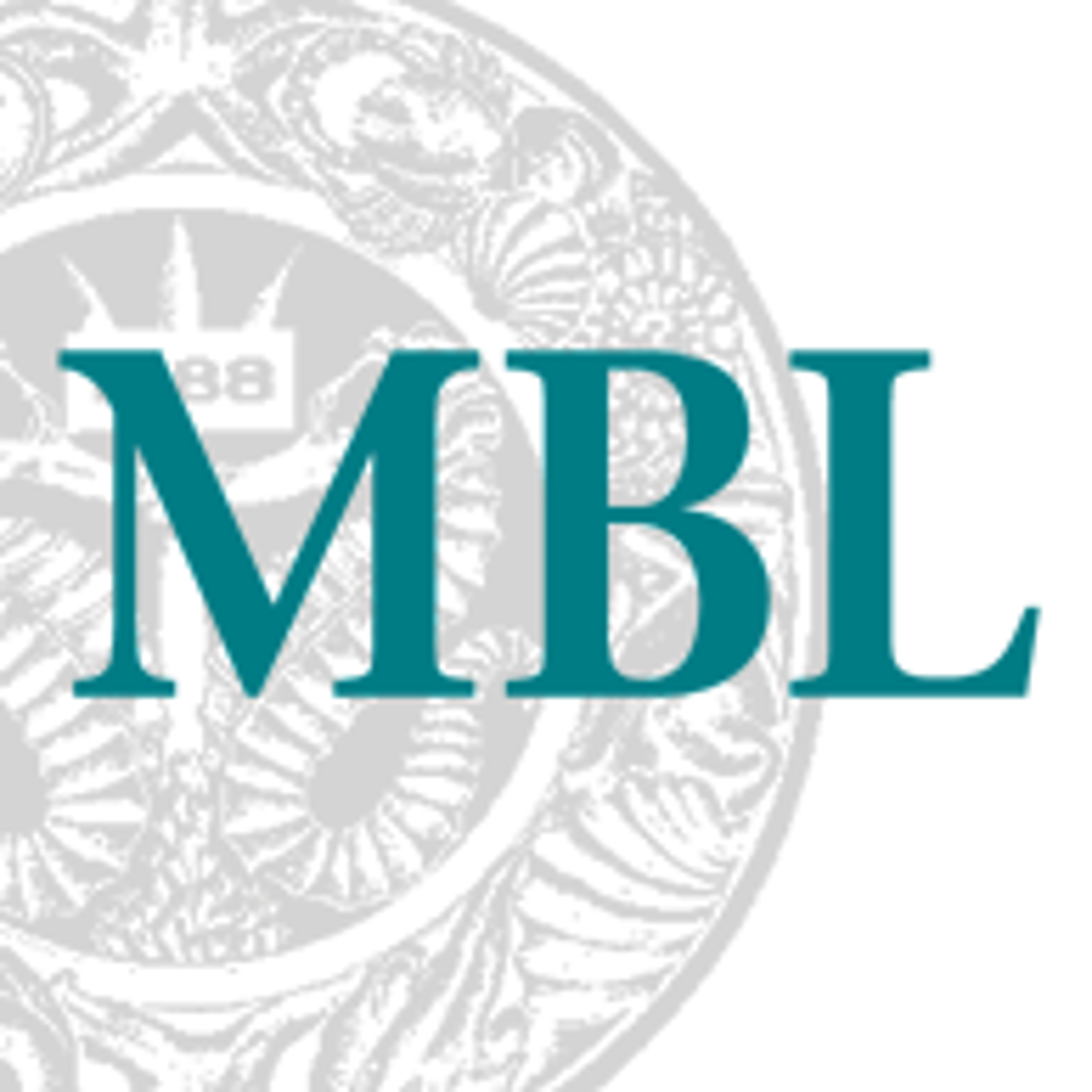 Logo 1373972683.png?ixlib=rb 1.1