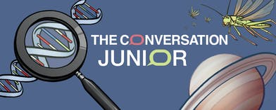 https://theconversation.com/fr/topics/the-conversation-junior-64356