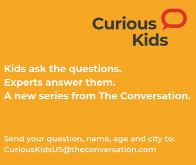 https://theconversation.com/us/topics/curious-kids-us-74795