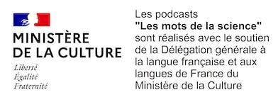 https://www.culture.gouv.fr/Sites-thematiques/Langue-francaise-et-langues-de-France/La-DGLFLF